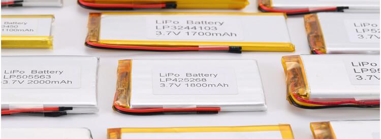 Standard Li Polymer Battery 10000mAh+